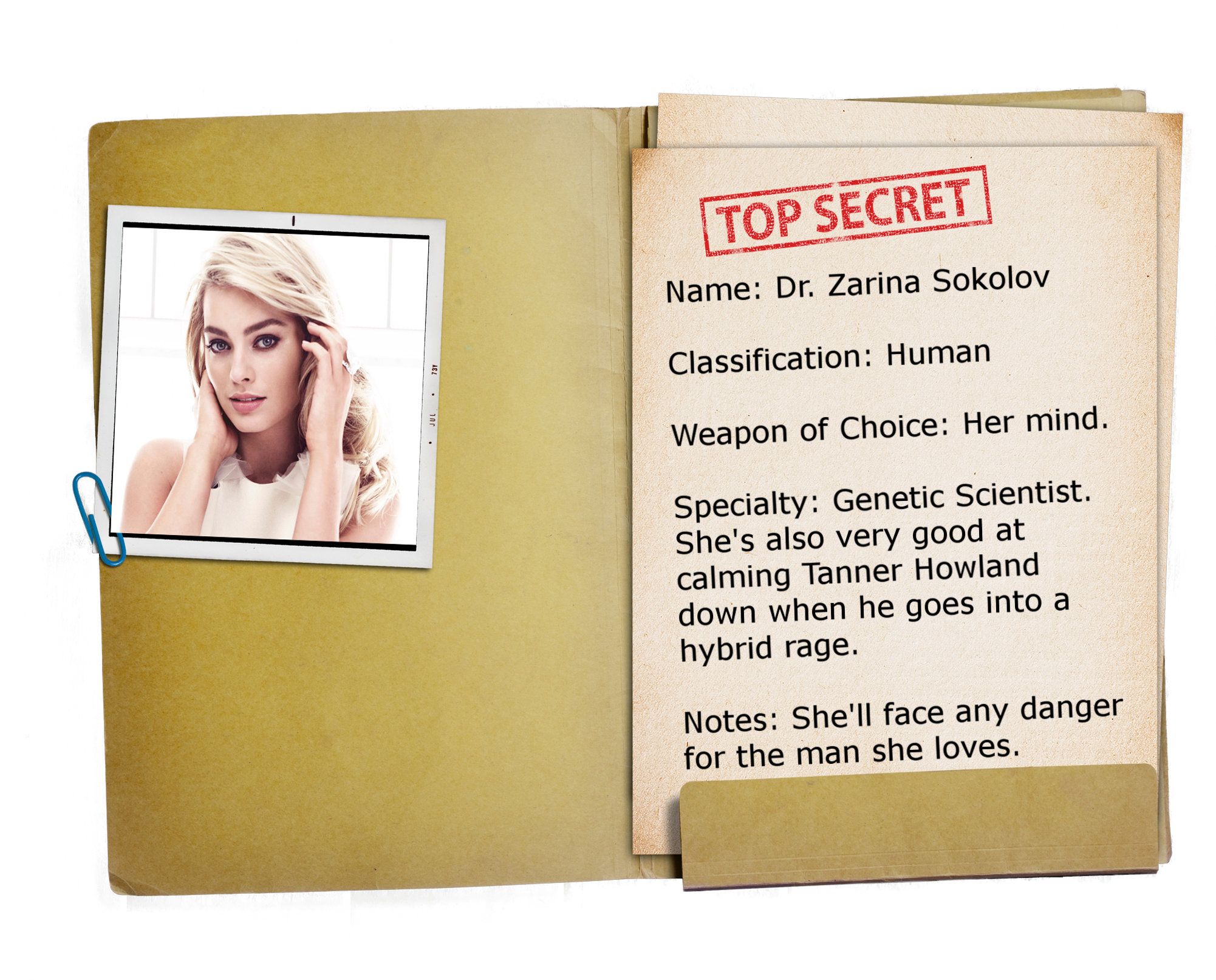 15 – Top Secret Folder TRANSPARENT Zarina