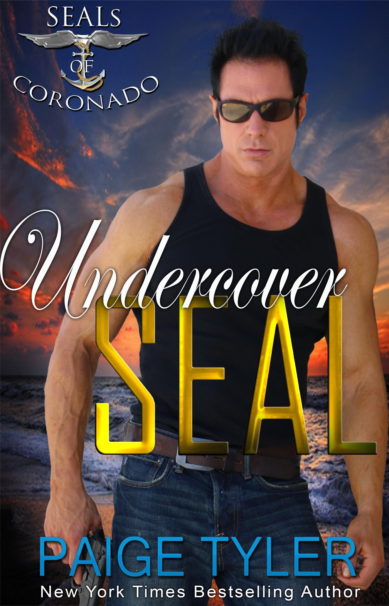3e – SOC 4 Undercover SEAL