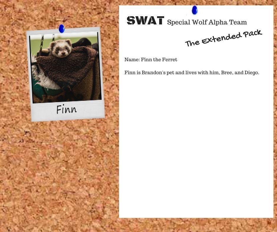 SWAT Finn