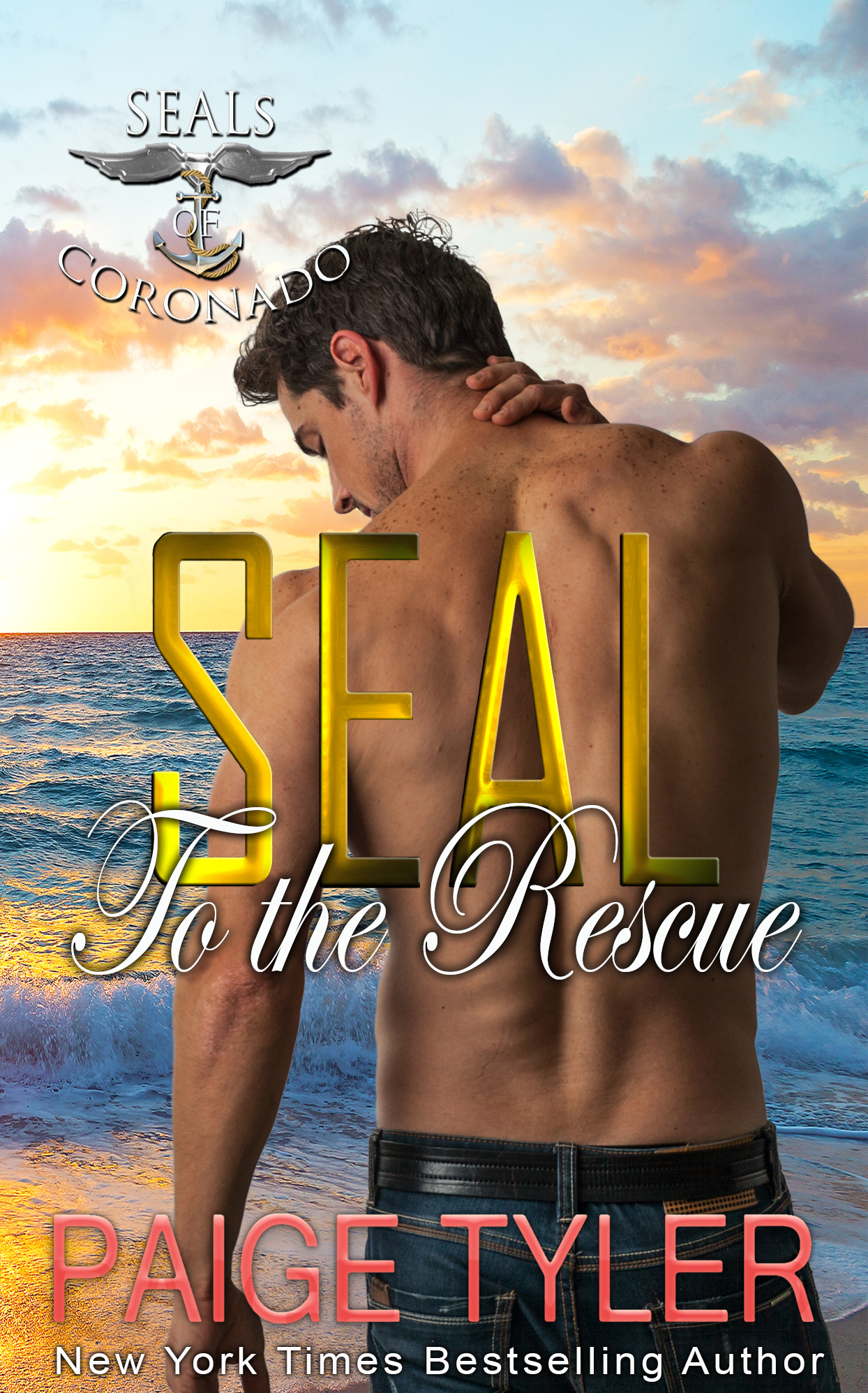 Seal to the rescue cover (1)